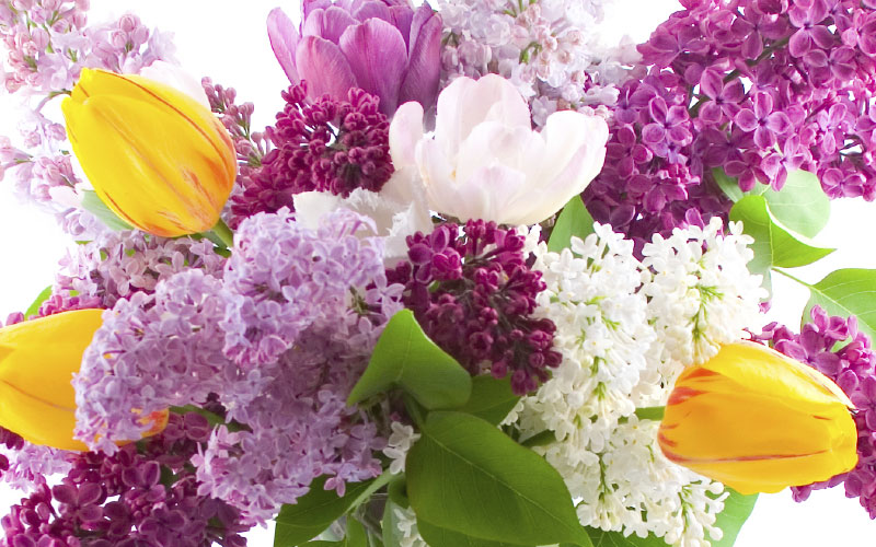 Spring Flowers delivered in Catoosa