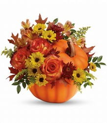 Warm Fall Wishes from Catoosa Flowers in Catoosa, OK